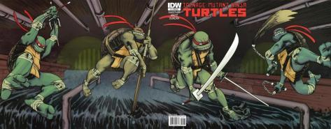 TMNT IDW #1 Connected Cover Variants